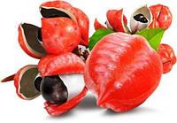 Натуральный продукт для похудения Амазонская гуарана Жидкий Каштан