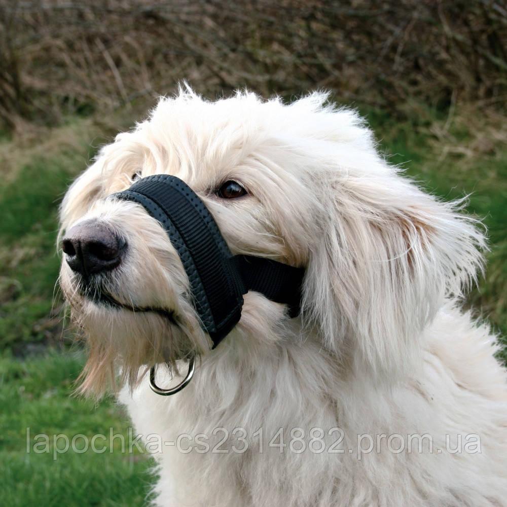 Trixie Намордник-петля для собак, черный