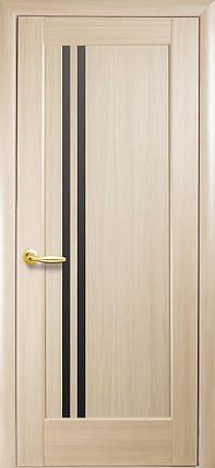 """Дверь """"Делла BLK"""", фото 2"""