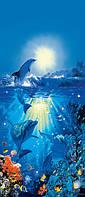 Фотообои на дверь Дельфин на солнце 86*200 Код 513