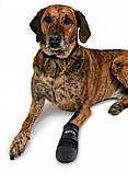 Ботинки Trixie Walker Care для собак, M 2 шт (Бордер-колли) , фото 3