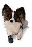 Ботинки Trixie Walker Care для собак, M 2 шт (Бордер-колли) , фото 4