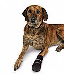 Ботинки Trixie Walker Care Comfort для собак, XXL 2 шт (Бернский зенненхунд)  , фото 4