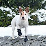Ботинки Trixie Walker Active для собак, L 2 шт (Лабрадор) , фото 2