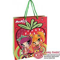 """Kite Пакет бумажный подарочный, (18х24 см) """"Pop Pixie"""" арт. PP14-265K"""