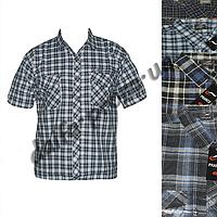 Мужская котоновая рубашка RK70m с коротким рукавом оптом недорого со склада в Одессе