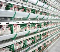Оборудование для сельскохозяйственных ферм под ключ