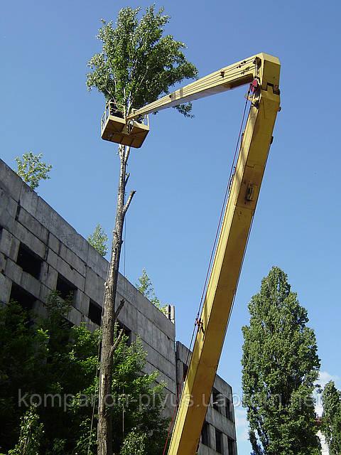 Дополнительные работы с деревьями