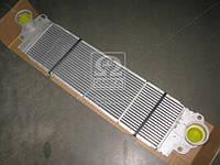 Интеркулер VW (производитель Nissens) 96683