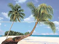 Декор-панно Дуал Грес Сет Парадиз А 450*600 Dual Gres Set Paradise A плитка настенная для гостинной.