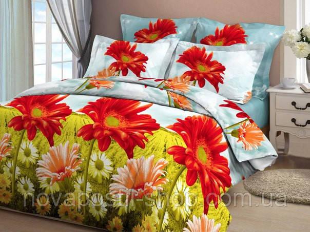 Комплект постельного белья Хризантемы 3D