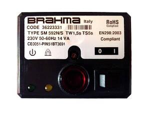 Менеджери горіння Brahma