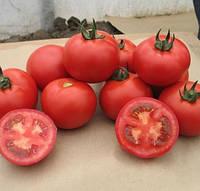 ВАЛДАЙ F1 - семена томата полудетерминантного, 500 семян, Bayer, фото 1