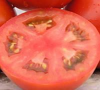 ЛАМАНТИН F1 - семена томата детерминантного, 1 000 семян, Bayer, фото 1
