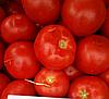 Т-97082 (КВАЛИТЕТ) F1 семена томата полудетерминантного, 500 семян, Syngenta