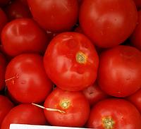Т-97082 (КВАЛИТЕТ) F1 семена томата полудетерминантного, 500 семян, Syngenta, фото 1