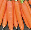 СИРКАНА F1 - семена моркови Нантес (1,6-1,8), 100 000 семян, Bayer