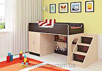Детская кровать ДМ-25