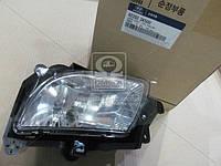 Фара противо - туманная правая HYUN SONATA 08-10 (производитель Mobis) 922023K500