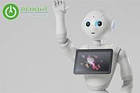 В Японии выпустили в продажу первого робота, который может распознавать эмоции