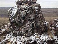 Ай-петри, коралловый камень
