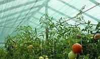Сетки для сада и огорода