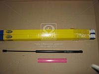 Амортизатор багажника/капота FORD (производитель Magneti Marelli коробкикод. GS0174) 430719017400
