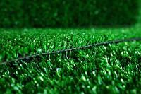 Ландшафтная трава Sintelon (Украина, г.Днепр)