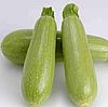 АРАЛ F1 - семена кабачка, Sakata