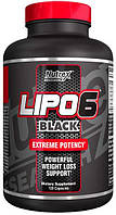 Lipo-6 Black Nutrex Research, 120 капсул