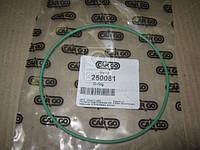 Кольцо О-образное (производитель Cargo) 250081
