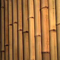 Ствол бамбука-К  3-4см  длина 4м