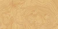 Шпон Ясень Корень (Белый), фото 1