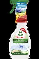 Frosch wie Gallseife Flecken- & Vorwasch-Spray - Пятновыводитель-спрей с желчью, 500 мл