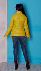 Молодежная куртка из плащевки, фото 3