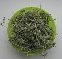 Якорцы стелющиеся, Tribulus terrestris, Трибулус, купить в Украине