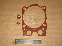 Ремкомплект двигателя (3 наименования) ( красный) (производитель Украина) 740.1003209