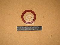 Сальник хвостовика КАМАЗ правыйвращения красный (176) (производитель Украина) 864176