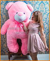 Розовые мишки великаны 200 см