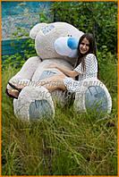 Мягкий мишка Великан 250 см | Самый большой медведь