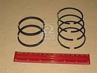 Кольца поршневые компрессора М/К (60,0) (производитель СТАПРИ) СТ-130-3509167-02