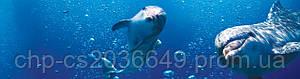 Море Дельфины Кухонный фартук