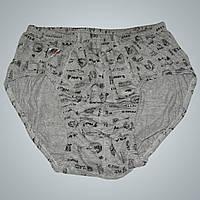 Мужские плавки EzGi (10р. 54-56)