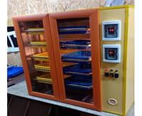 Инкубатор Курочка Ряба 500 яиц автоматический, цифровой