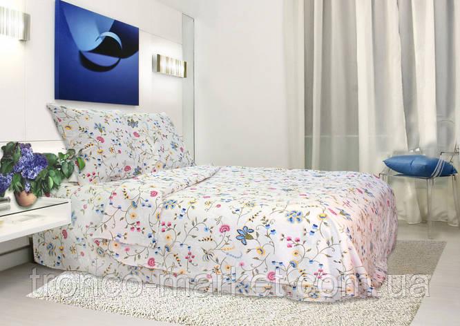 Евро постельный комплект A0023, фото 2