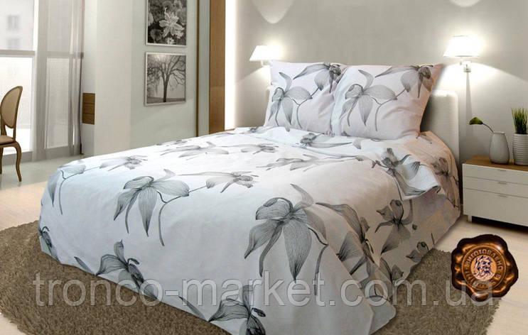 Евро постельный комплект A0028, фото 2