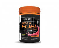 Twinlab BCAA Fuel 234 g