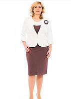 Женский  костюм  Гламур   больших размеров   52,  54, 56, 58