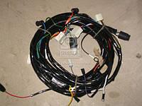 Пучок проводов задний правый(производитель Россия) 55102-3724044