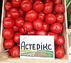 АСТЕРИКС F1 - семена томата детерминантного, 2 500 семян, Syngenta